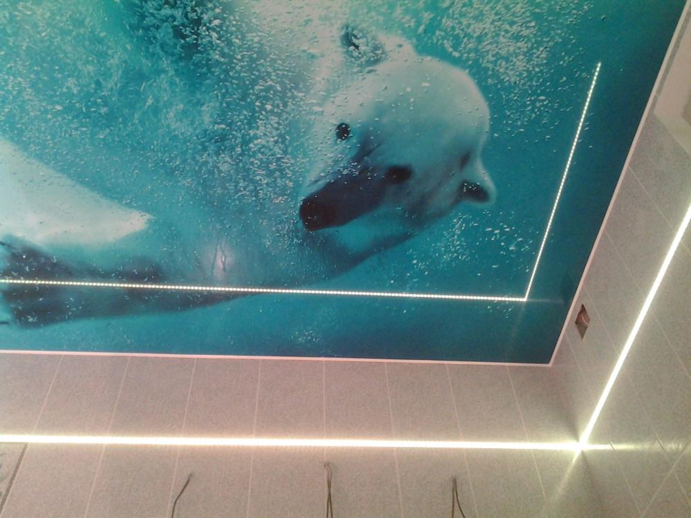 Натяжные потолки для ванной комнаты от производителя - Orion Star | 750x1000