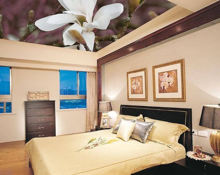 Натяжной потолок с индивидуальной Арт печатью - реализуйте свои мечты в реальность