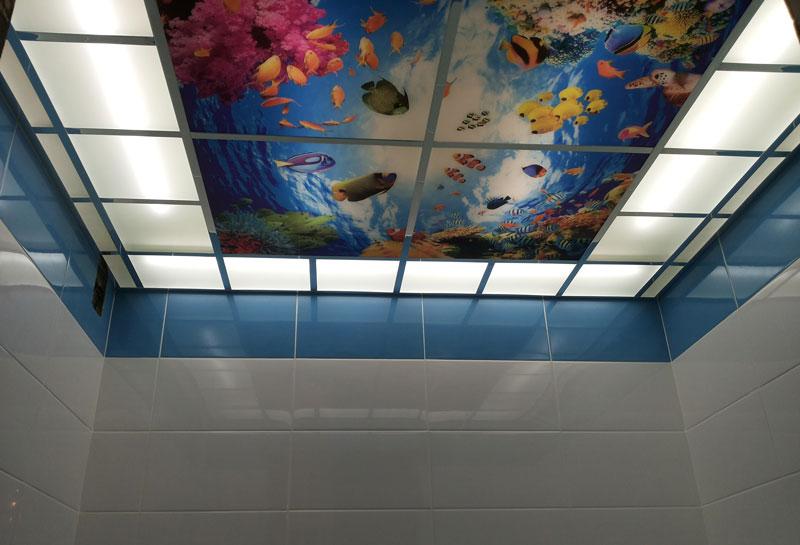 Натяжной потолок с фотопечатью морской фауны в ванной