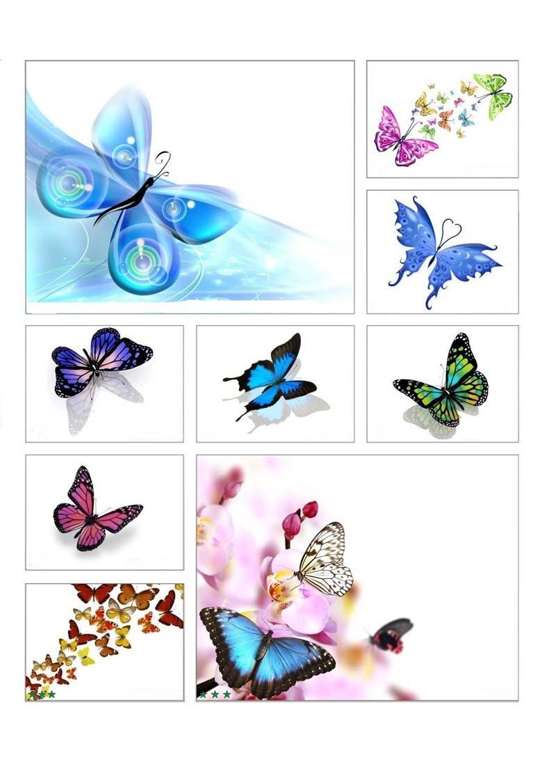 Легкость, элегантность и эксклюзивность придаст вашему потолку арт печать с изображением бабочки